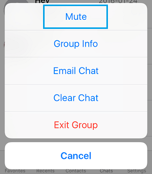 Mute WhatsApp Chat Option on iPhone